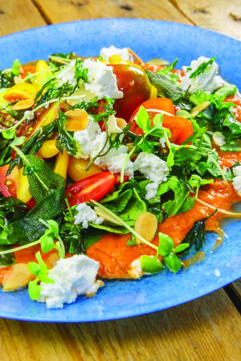 סלט עגבניות שרי וגבינת פטה ברוטב פלפלים של שגב. צילום: נמרוד גנישר