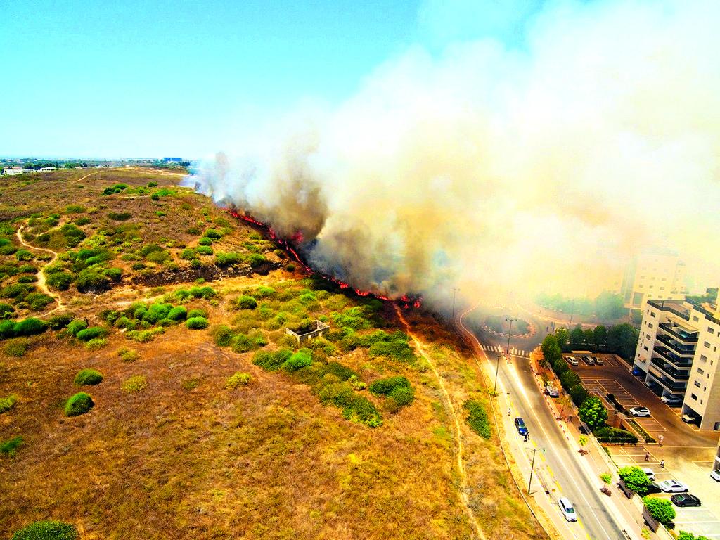 השריפה באירוס   צילום: שירותי כיבוי האש