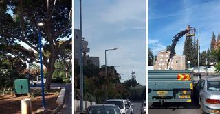 התקנת המנורות החלה | צילום: דוברות עיריית רחובות